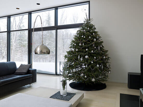 Keeping Your Christmas Tree Around Longer