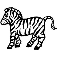 Thumbnail image for African Zebra