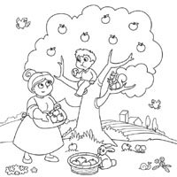 Thumbnail image for Apple Harvest
