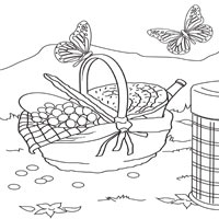 Thumbnail image for Basket and Butterflies
