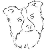 free coloring pages of border collies images