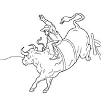 Thumbnail image for Bull Riding