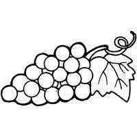 Thumbnail image for Bunch of Grapes