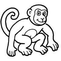Thumbnail image for Chimpanzee