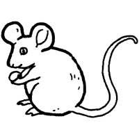 Thumbnail image for Country Mouse