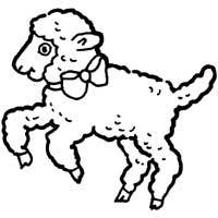 Thumbnail image for Fluffy Lamb