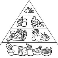 Thumbnail image for Food Pyramid