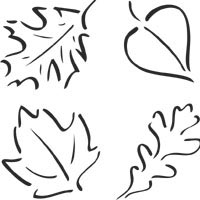 Thumbnail image for Four Leaves