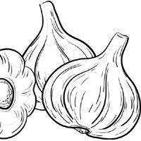Thumbnail image for Garlic Heads