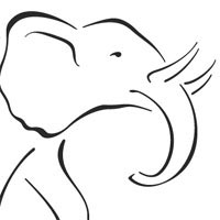 Thumbnail image for Grand Elephant