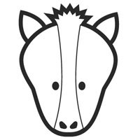 Thumbnail image for Horse Face