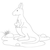 Thumbnail image for Kangaroo With Joey