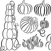 Thumbnail image for Many Pumpkins
