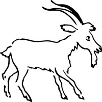 Thumbnail image for Mountain Goat