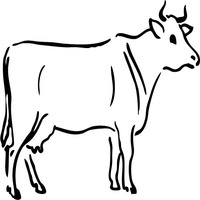 Thumbnail image for Pensive Cow