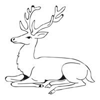 Thumbnail image for Resting Stag
