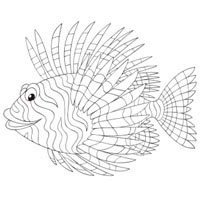 Thumbnail image for Scorpion Fish