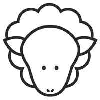 Thumbnail image for Sheep Face
