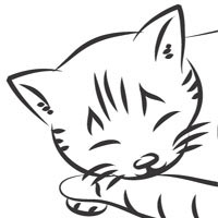 Thumbnail image for Sleeping Kitten