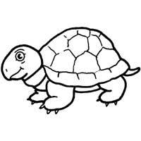 Thumbnail image for Snapping Turtle