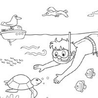 Thumbnail image for Snorkeling Fun