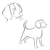 Thumbnail image for Two Dogs