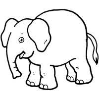 Thumbnail image for Wise Elephant