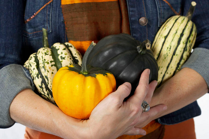 Making Birdhouses Out of Gourds