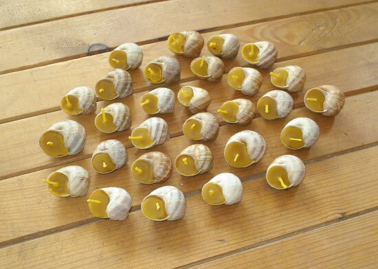 Beeswax Candles Votives In Snail Shell