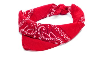 Stamped Bandanna