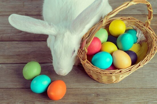 White Bunny with Easter Basket