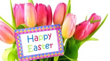 Stories About the Easter Bunny for Fun and Humor