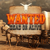 Wanted Dead or Alive Puzzles