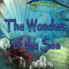 Wonders of the Sea Puzzles