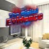 Digital Evidence Puzzles
