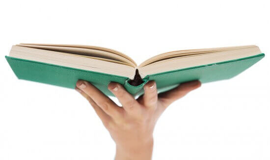 education and book concept - close up of woman hand holding open