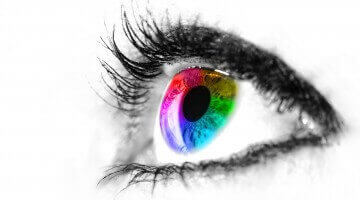 10 Facts about Color Vision