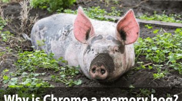 Why is Chrome such a memory hog?
